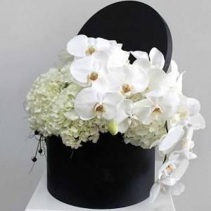 Орхидеи и гортензия в коробке R783
