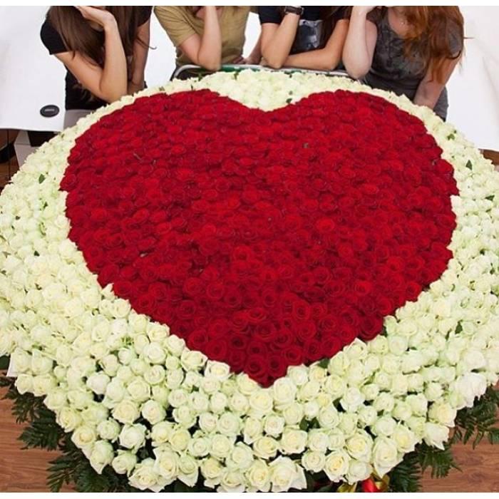 1001 роза в корзине с сердцем R929