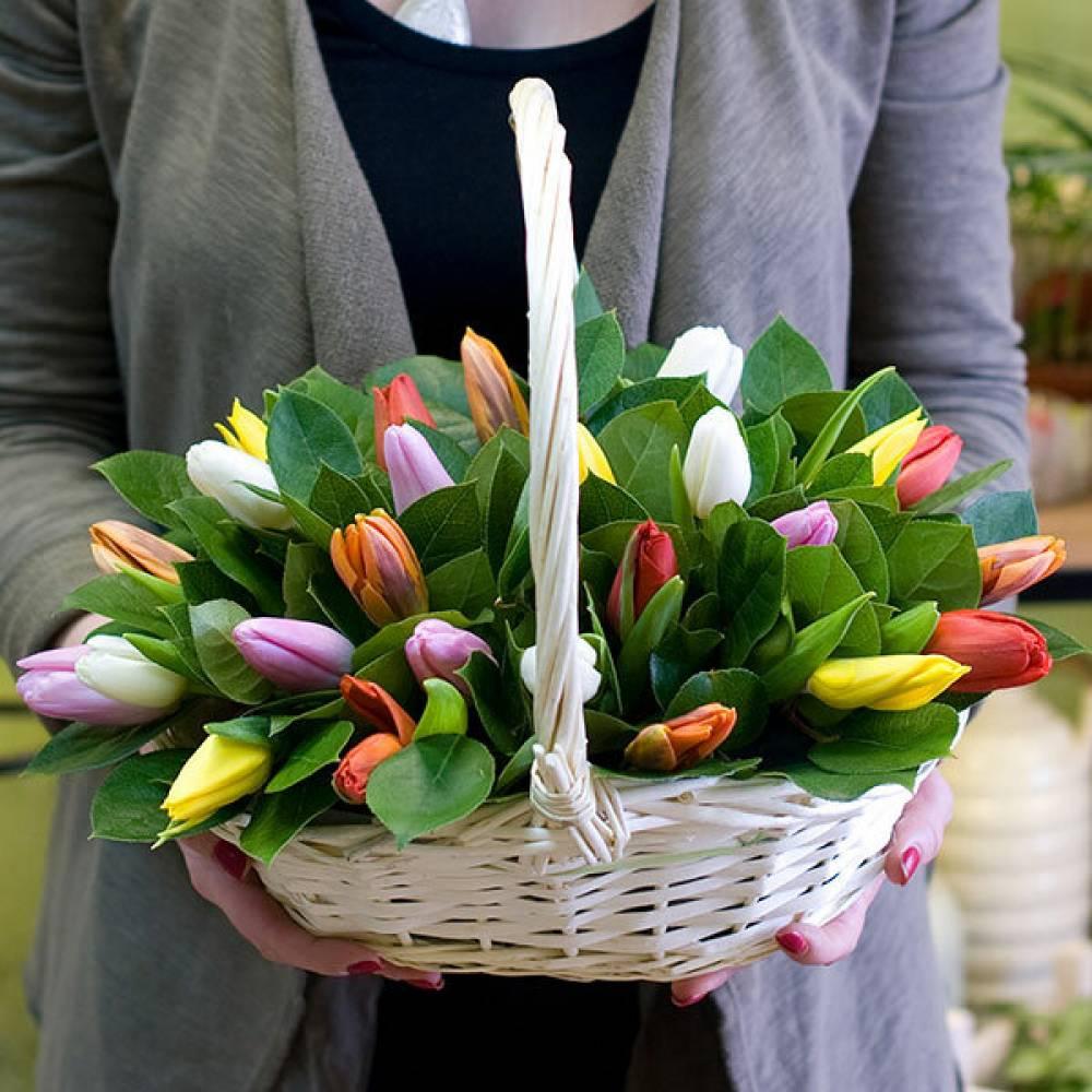 фото простого букета с тюльпанами готовы ловить