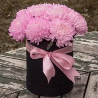 Коробка 15 розовых хризантем R578