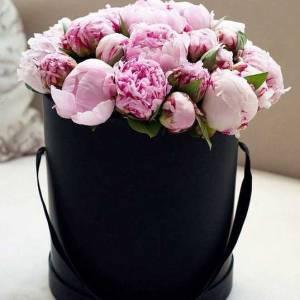 19 розовых пионов в черной коробке R755