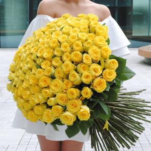 Букет 101 крупная желтая роза с лентами R684